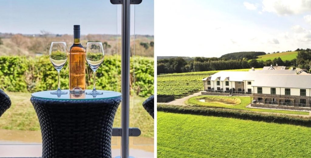 Vineyards in England that offer wine tasting tours 2