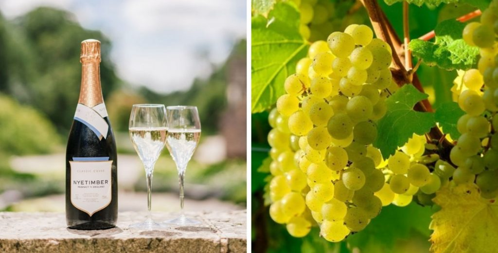 Vineyards in England that offer wine tasting tours 1